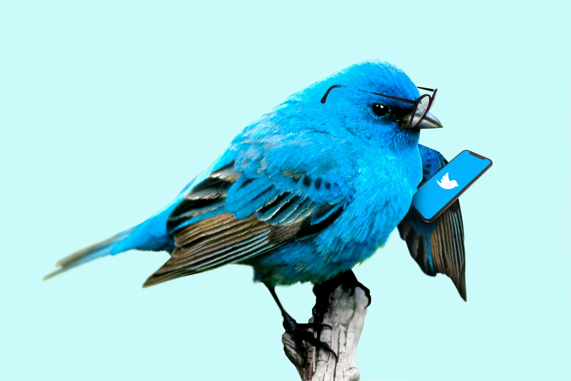 Twitter admits it was overzealous on '5G causes COVID-19' fact-checking