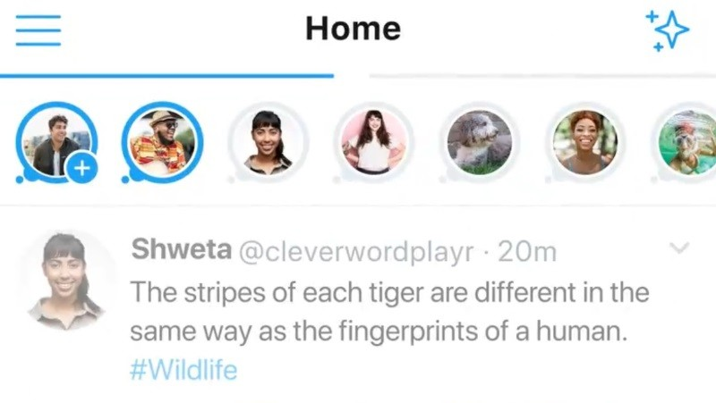 Twitter's Stories-like format Fleets now available in India