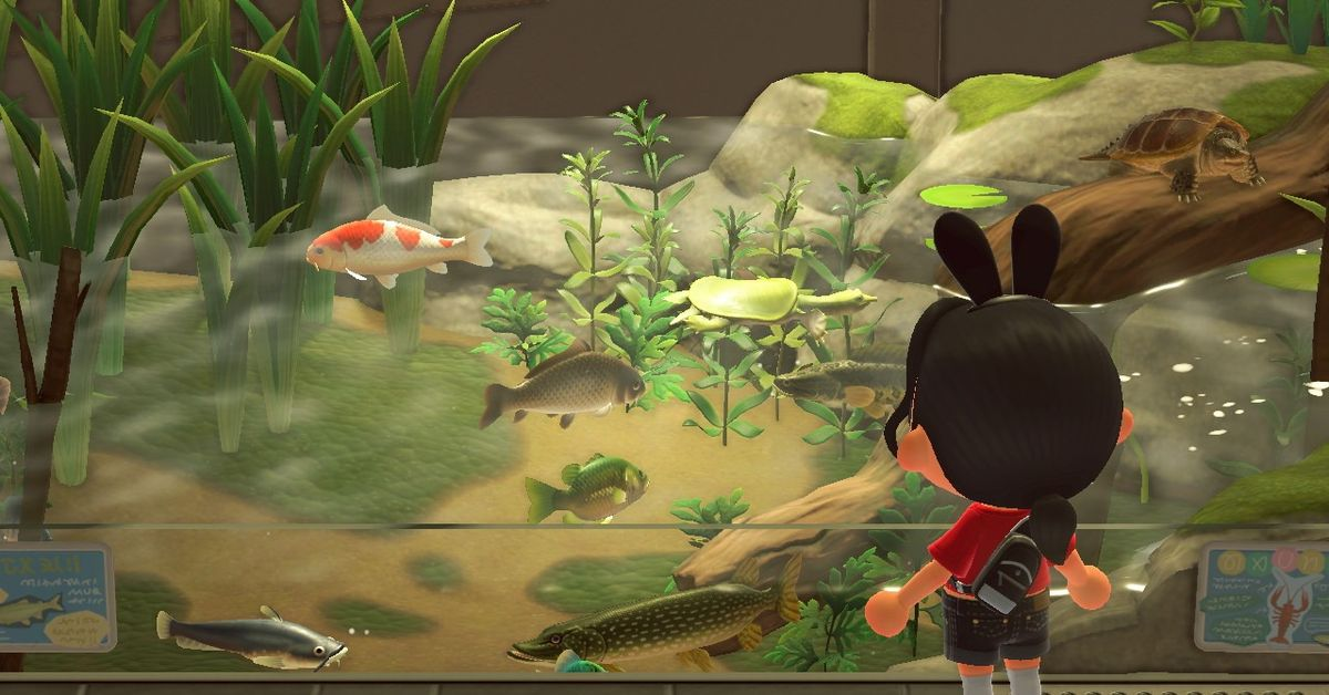 These are the new fish and bugs for August in Animal Crossing: New Horizons