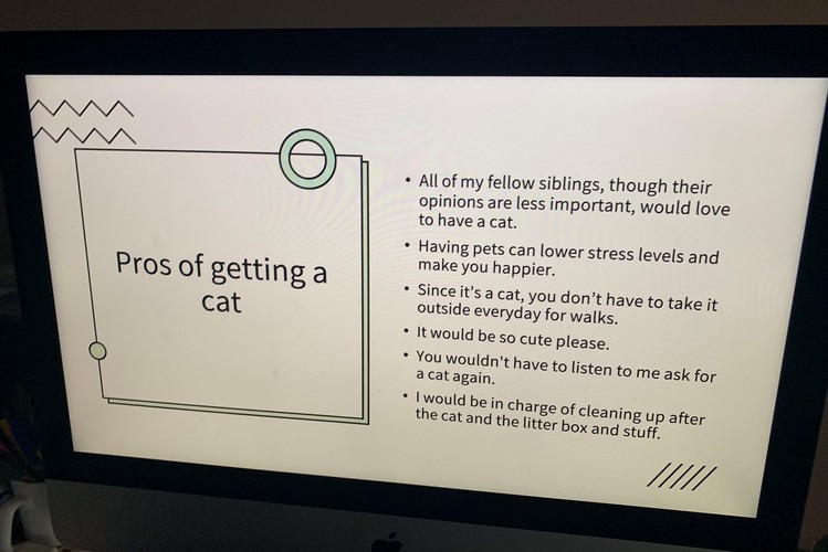 "Little Girl's Presentation on ""Pros of Getting a Cat"" is Super Cute"