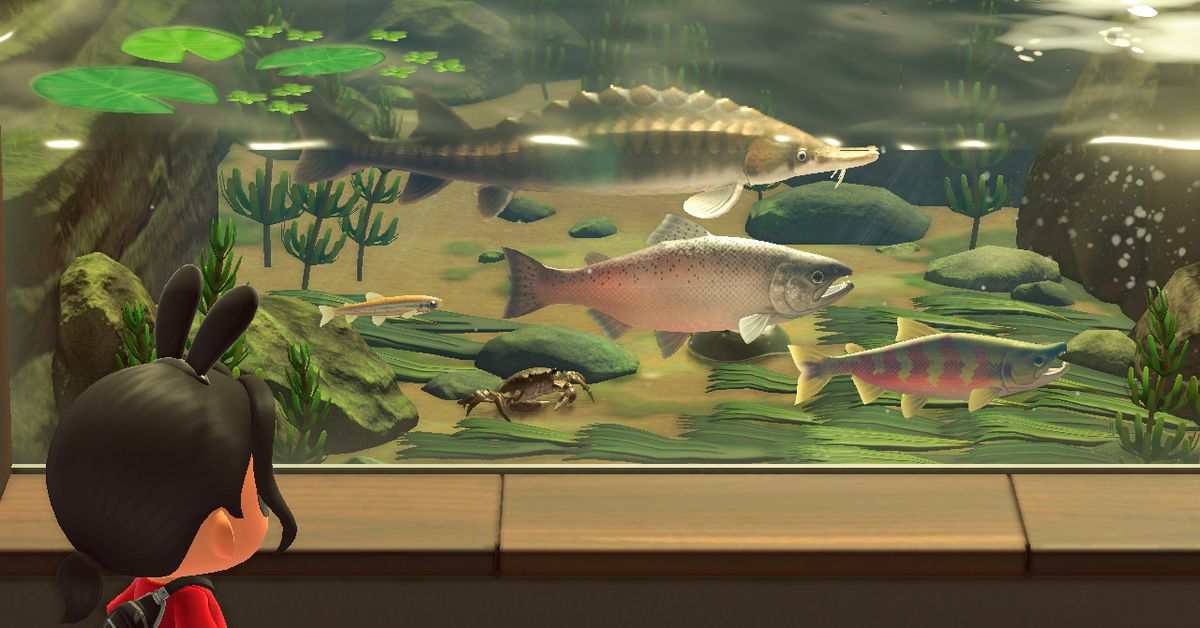 Animal Crossing: New Horizons - March list of new bugs and fish to catch